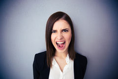 Angry businesswoman shouting over gray background. Looking at camera Stock Images