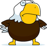 Angry Cartoon Bald Eagle Stock Image