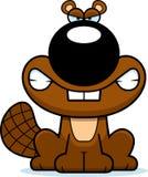 Angry Cartoon Beaver Stock Photos