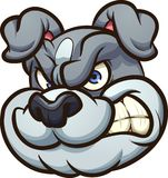 Angry cartoon bulldoghead Royalty Free Stock Photography
