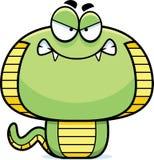 Angry Cartoon Cobra Stock Image