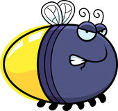 Angry Cartoon Firefly. A cartoon illustration of a firefly with an angry expression Royalty Free Stock Photos