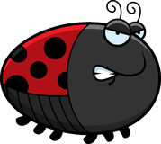 Angry Cartoon Ladybug Stock Image