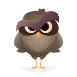 Angry cartoon owl Royalty Free Stock Photos