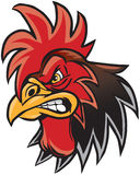 Angry Cartoon Rooster Mascot Head Illustration Royalty Free Stock Photos