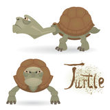 Angry cartoon turtle Royalty Free Stock Image