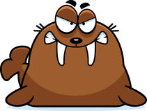 Angry Cartoon Walrus Stock Images
