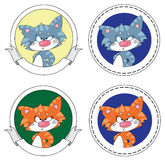 Angry cat banner Stock Photos
