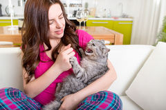 Angry cat bites with claws woman Royalty Free Stock Photography