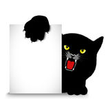 Angry cat holds a banner Royalty Free Stock Image