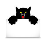 Angry cat holds a banner Royalty Free Stock Images