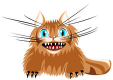 Angry cat with long whiskers Royalty Free Stock Images