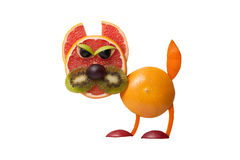 Angry cat made of orange and grapefruit Royalty Free Stock Photography