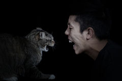 Angry Cat and Man Stock Photo