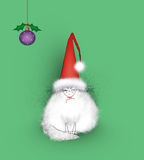 Angry Cat Wearing a Giant Santa Hat. Funny white cat angry at being forced to wear a silly Santa hat Royalty Free Stock Photos