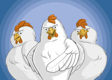 Angry chickens group. Illustration of angry chickens group with a lead pointing front Royalty Free Stock Photos
