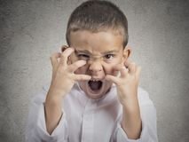 Angry child, Boy Screaming hysterical Stock Images
