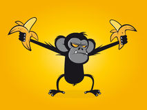 Angry chimp is holding bananas Stock Photography