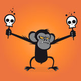 Angry chimp is holding skulls on stick Royalty Free Stock Photos