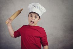 Angry cook child. On gray background stock photography