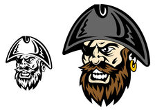 Angry corsair captain. Angry corsair and pirate captain for mascot design Royalty Free Stock Image