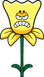 Angry Daffodil Stock Photo