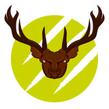 Angry deer badge Royalty Free Stock Photography