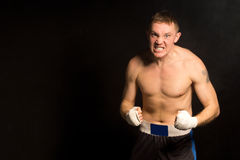Angry determined young boxer Stock Images