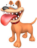 Angry Dog. Beware of the dog! Picture with isolation on a white background Stock Photography