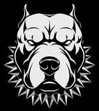 Angry dog head. Vector illustration Angry pitbull mascot head, on a white background vector illustration