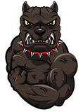 Angry dog mascot. Cartoon. illustration Stock Image