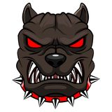 Angry dog mascot cartoon. Illustration Stock Photography