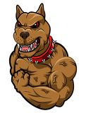 Angry dog mascot. Cartoon. illustration Stock Photography