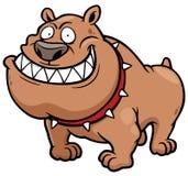 Angry Dog Stock Photography