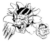 Angry dragon sports mascot Royalty Free Stock Photography