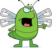 Angry Dragonfly Stock Photo