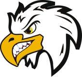 Angry eagle Stock Photos