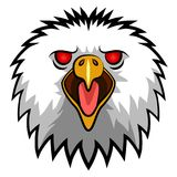Angry Eagle Head Mascot Stock Images