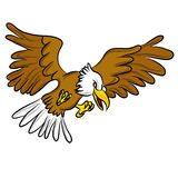 Angry Eagle Royalty Free Stock Photography
