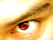 Angry Eye. Closeup of an angry red eye Royalty Free Stock Photography