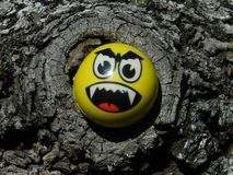 Angry face in the middle of a tree hole. Yellow angry face that is stuck in the middle of a tree hole and doesn`t appear to have a way out stock photography