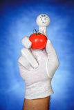 Angry finger puppet holding tomato fruit Stock Photography