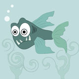 Angry fish. An angry blue fish in the ocean with big eyes Stock Photo