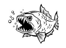 Angry fish Stock Photos