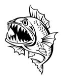 Angry fish Royalty Free Stock Images