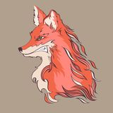 Angry fox, detailed cartoon style vector illustration Stock Photos
