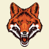 Angry Fox Head Mascot Stock Photo