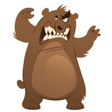 Angry and funny cartoon brown grizzly bear making attacking gesture. Funny aggressive cartoon brown grizzly bear attacking by standing with open mouth and vector illustration