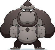 Angry Gorilla Royalty Free Stock Photo