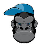 Angry gorilla with a cap vector illustration